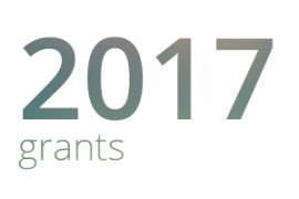 Grants awarded for 2017